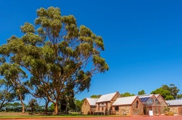 Chapell Hill Winery on your mclaren vale wine tour